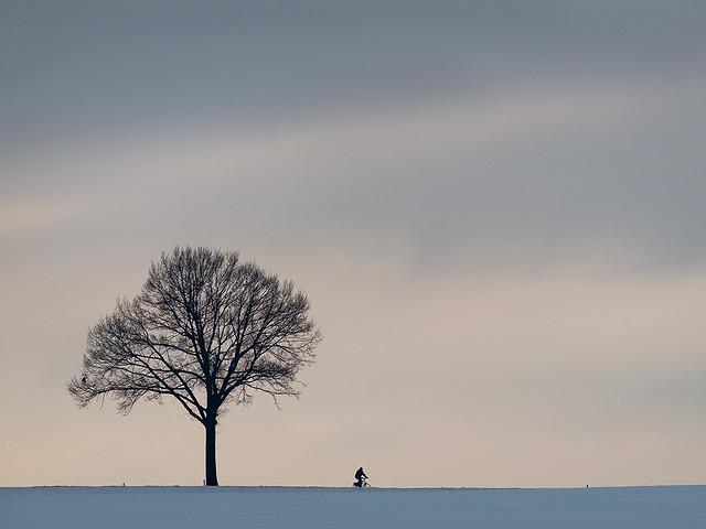 Lonely Biker