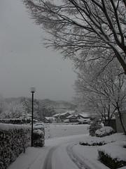 関金温泉雪景色