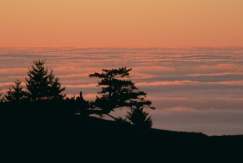 Above the fog at sunset, Bolinas Ridge, California