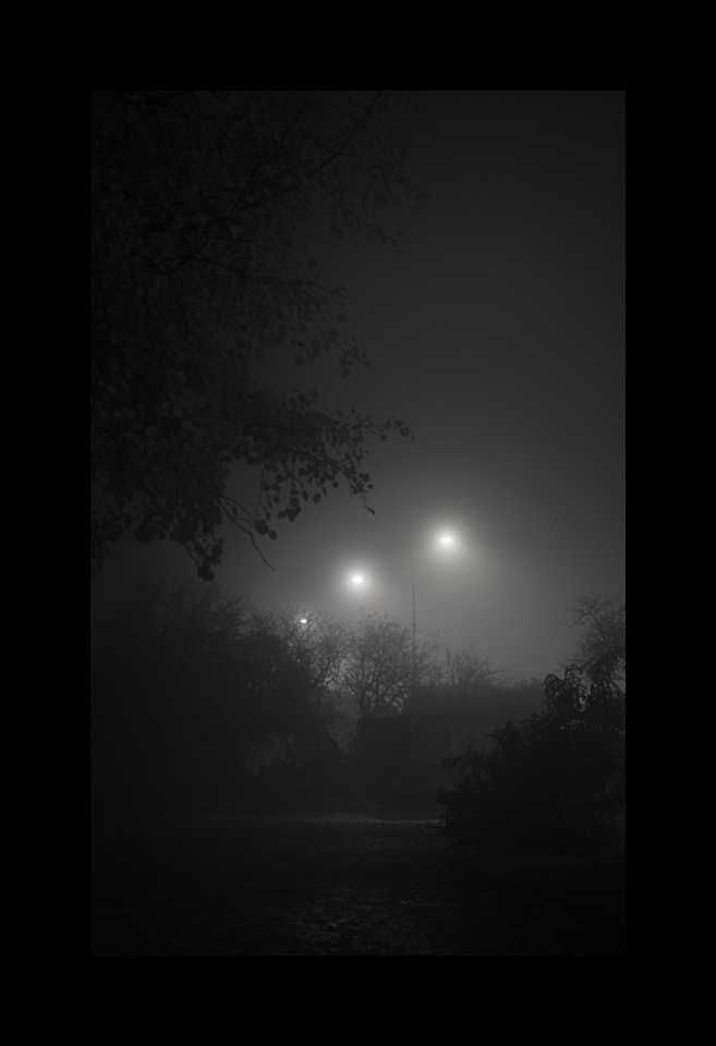 Information about ID598: Night Fog by Nicholas M Vivian