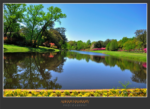 flowers trees usa lake reflection green nature water grass mobile gardens landscapes nikon ngc alabama wideangle southeast ponds و theodore بحيرة ، gulfcoast باغ clearskies naturesfinest d90 bellingrathgardens ماء دار نهر حديقة fantasticnature أزهار flickraward 18200mmnikkor أشجار حدائق گوڵ wonderfulworldofflowers nikonflickraward باخ نهير درەخت مناظرطبيعية ئاو دیمەنی سروشتی گوڵزار ألوانالولاياتالمتحدةالأمريكية ولايةألباما