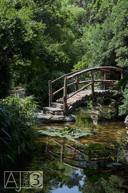Zilker Botanical Garden Austin Texas A Small