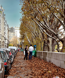 Street in autumn