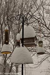 Three Days of Snow - 1