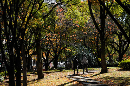 20101127 Nagoya 9 (Walking)
