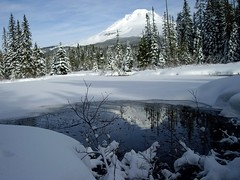 Snowshoeing and Winter by Nina