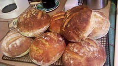 meal, baking, bread, baked goods, ciabatta, food, bread roll, cuisine, brioche, danish pastry,
