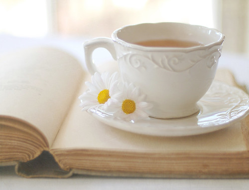 """You can never get a cup of tea large enough or a book long enough to suit me."""