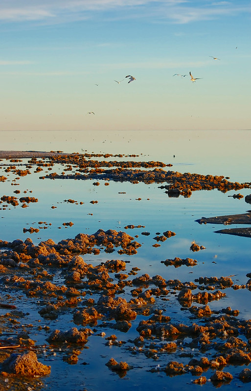 Salton Sea - Bombay Beach
