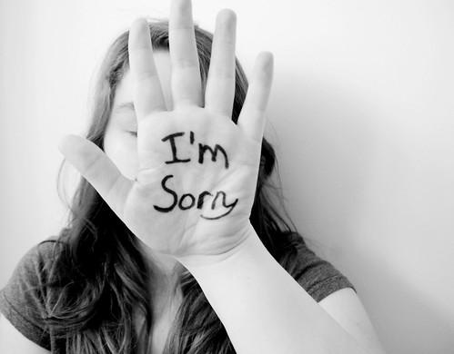 All Apologies(20/365)