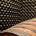 Castellroig, vins de terrer - 19