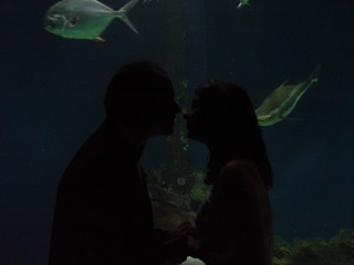 Kissing In Front of Aquarium