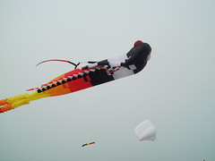 winter sport(0.0), freestyle skiing(0.0), wing(0.0), sports(0.0), extreme sport(0.0), kitesurfing(0.0), toy(0.0), red(1.0), windsports(1.0), kite(1.0),