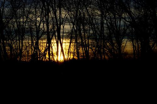 trees sunset nature silhouette pentaxkx