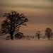 Norfolk Winter Landscape by violinconcertono3