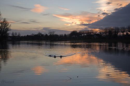 pink sunset sky lake water clouds reflections sundown pentax ducks k5 pentaxk5