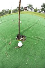 pitch and putt, sport venue, grass, sports, artificial turf, golf club, green, golf, miniature golf, golf course, ball game, lawn, ball,