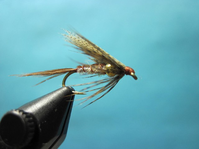 Hidden bead march brown wet fly tying video the caddis for Wet fly fishing