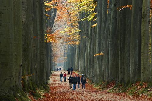 An Autumn Sunday Walk
