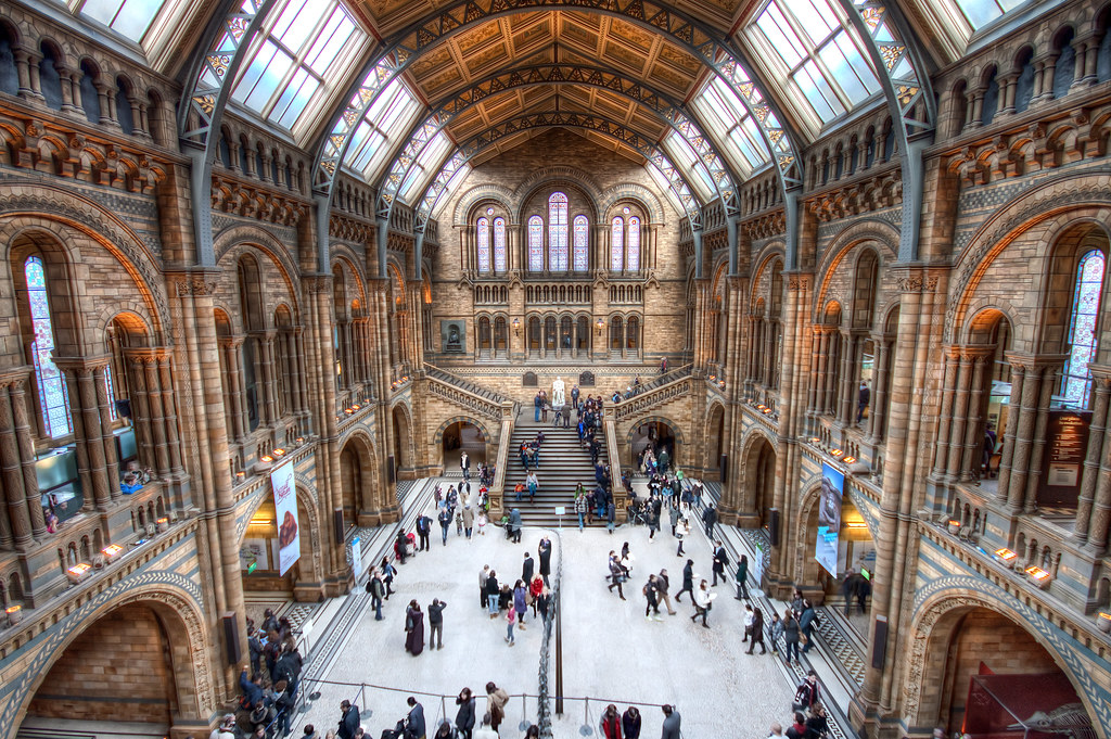 Natural History Museum Main Hall