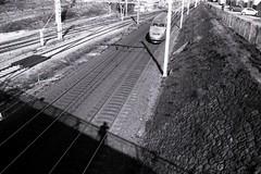 Autoportrait au train