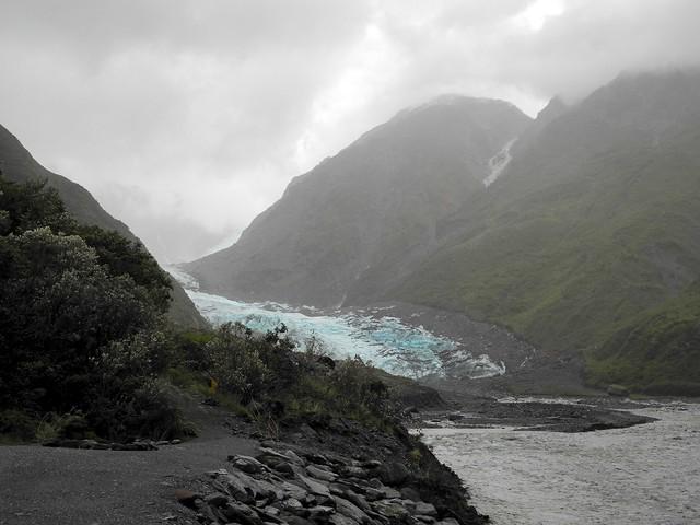 Glacier Fox (Te Moeka o Tuawe)