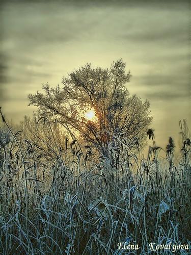 winter generalelectriccamerax5