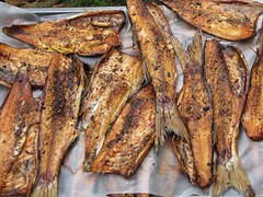 grilling(0.0), herring(0.0), fish(0.0), produce(0.0), potato wedges(0.0), sardine(0.0), roasting(1.0), smoked fish(1.0), fish(1.0), seafood(1.0), meat(1.0), food(1.0), dish(1.0), cuisine(1.0),
