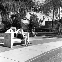 girl on phone on bench