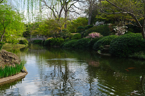 FW Japanese Gardens 1 | by BFS Man