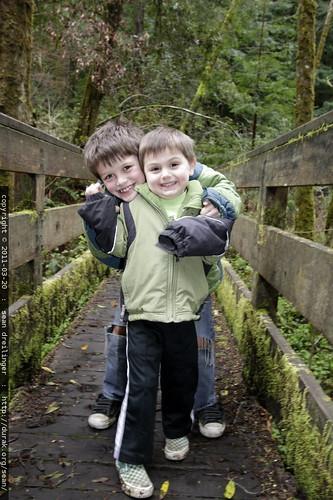 brothers on the bridge @ heritage grove in la honda redwoods