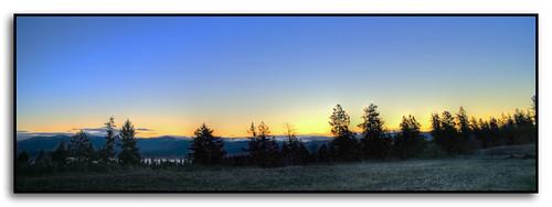 trees fog sunrise washington spokane hdr