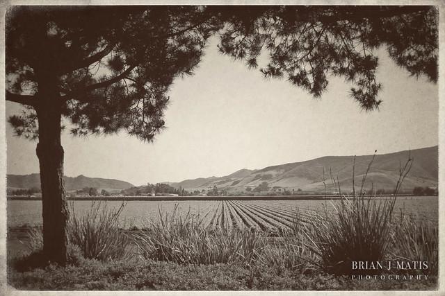 vintage landscape [816] | Flickr - Photo Sharing!