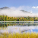 Connery Pond Morning by Robert Stone Nature Photography