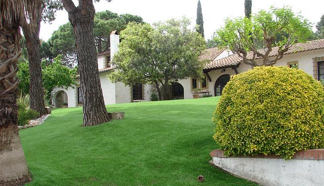 jard n de bellaterra con c sped artificial y pinos y