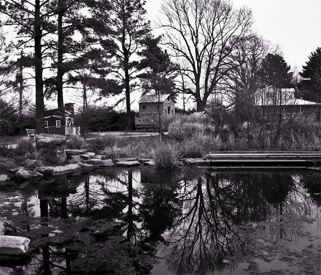 Memphis Botanic Gardens | My Big Backyard within the ...