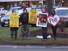 Fur Free Friday 11.16.10