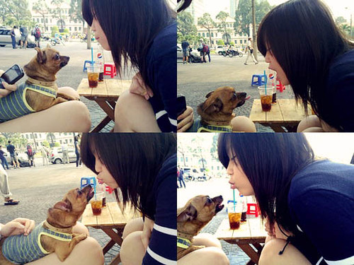 My Sunday with my Lucky Doggy ♥