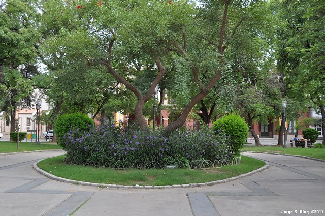 Plaza Libertad III