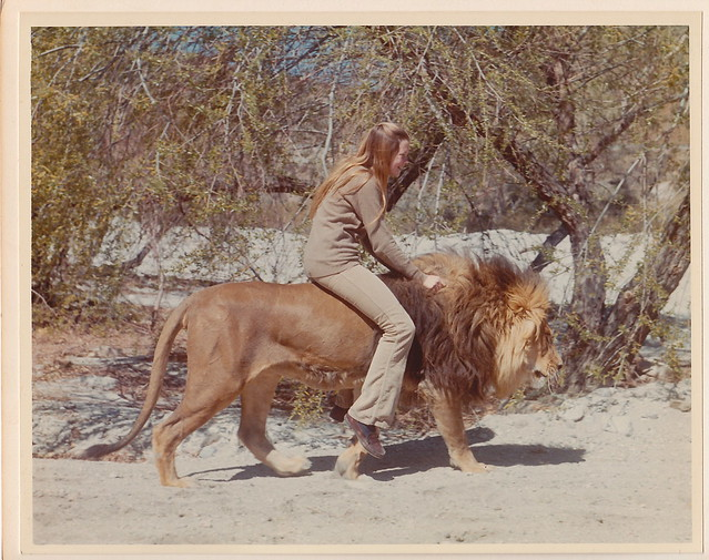 Aninimal Book: The Making of ROAR - Melanie Griffith Riding a Lion ...