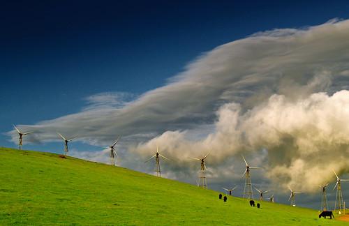 windmills altamont