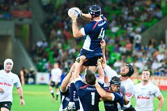australian rules football, football player, sports, rugby league, rugby union, rugby football, rugby player, team sport, tackle, player, rugby sevens, ball game, touchdown, athlete,