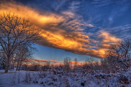 blue trees winter sky snow cold nature clouds sunrise landscape colorado denver littleton 201002
