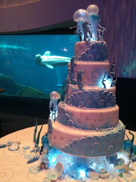 Aquarium Wedding Cake Flickr Photo Sharing