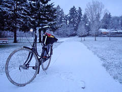 Batavus in the Snow