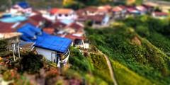 Miniature Cameron Highlands, Malaysia