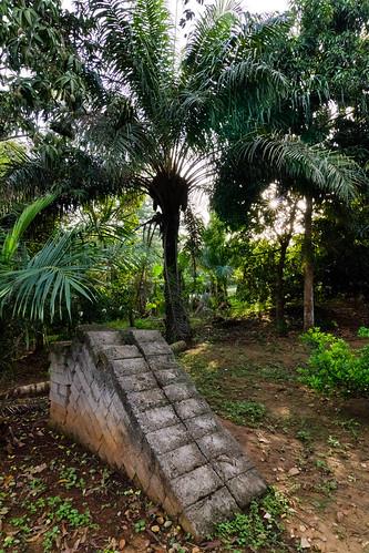 africa sunrise canon palms bricks ghana jungle afrika ho 1224mm tokina1224mmf4 voltaregion tokinaatx124 eos550d rebelt2i