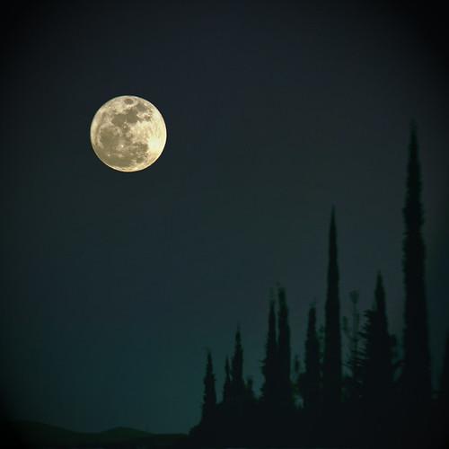Y nos dijeron que la luna era grande..