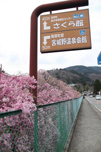 xlrider-cycling-japan-103