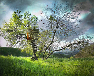 My Tree House